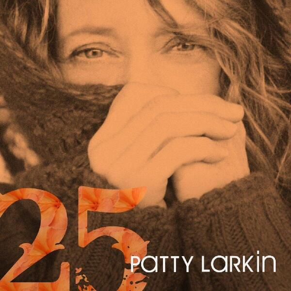 cover of 25