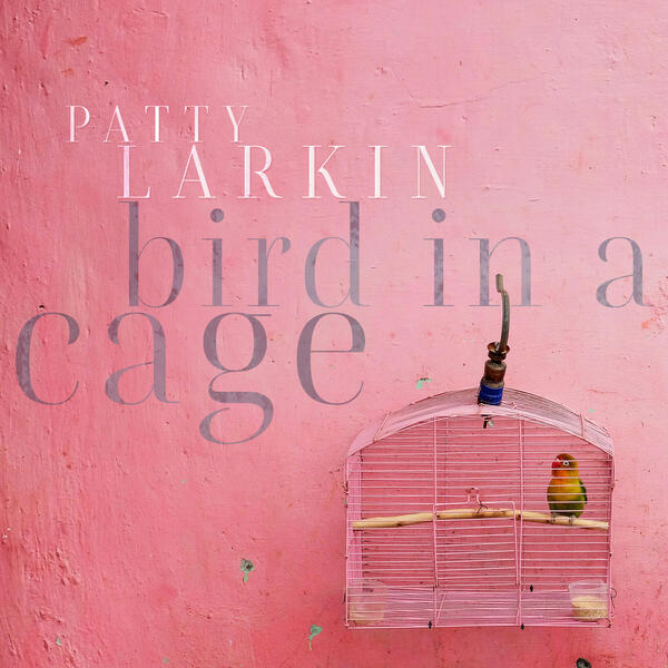 cover of bird in a cage