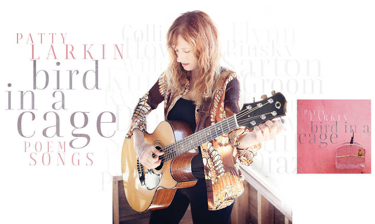 Patty Larkin album  bird in a cage  poem songs